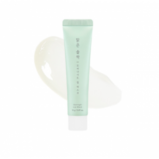 A'PIEU Pure Pine Bud Over Night Lip Mask 14g
